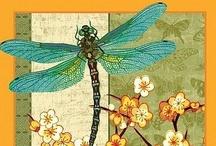 dragonfly ❦ vážka