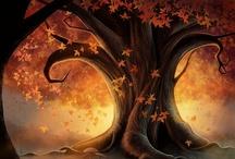 autumn ღ  jeseň /  jeseň