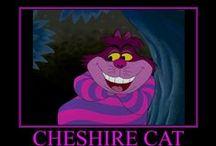CHESHIRE CAT  =^。^= / =^。^=