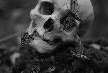 c o n c e p t; death