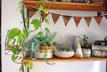 Home / by Jennifer Doody