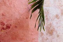 palette / by Julie Malone