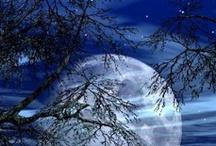 Moons / by Stephanie Makovsky