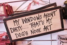 funny words, great sayings, cool images and things to think about