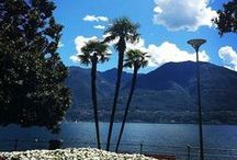 Your impressions of Ascona-Locarno / This is the place to pin your favourite photos of Ascona-Locarno, the sunny Swiss-Italian region on the shores of Lake Maggiore!  If you haven't been invited, simply follow this board in order to start pinning! Please note that pins with commercial aim will be deleted. Thank you for sharing your impressions with us. Your holidays, our passion! #myasconalocarno www.ascona-locarno.com