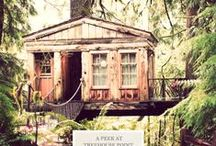 Favorite Places & Spaces / by Carolyn Miller