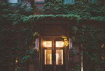 EXTERIOR / Exteriors, roof decks, gardens and backyard beauty