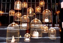 Bird Cage / For Decoration only !
