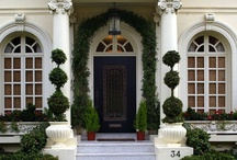 Topiary / Topiaries and Patio Trees