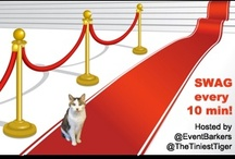 #RedCarpetCat / Join Gracey, The Tiniest Tiger, on the Red Carpet to celebrate the Emmy awards at the #RedCarpetCat Event Barkers Twitter party on 9/19!  / by TexasTripper.com