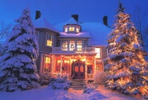 Christmas Lights / Outdoor Christmas Lights .... at Home and Around The World / by The Hummingbird Garden Diva