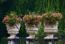 Planters and Urns / Planter, Urns and Pots