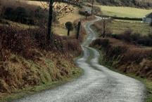 meandering pathways / by Lisa Pellicciotta