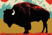 Bison / Fun, hands-on Bison or American Buffalo themed ideas. Learn about these huge mammals living on the plains, grasslands of North America. Activities for homeschool or classroom... / by Evelyn Saenz