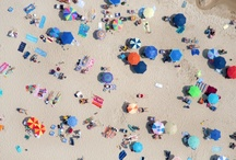 Beach Life / Photos of the ocean, the sand and those living in the midst of both. / by NYC Urchin