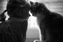 sweetness / by Kim Mahnke
