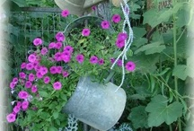 Landscape ideas / by Donna Forrest