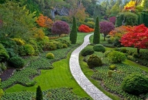 Fabulous Places & Spaces / by Rosemary S