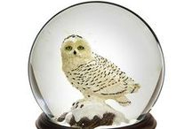 Snow Globes / Beautiful snow globes to make yourself or buy in shops