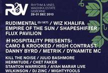 Rhythm & Vines 2013 Lineup