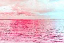 Colors / by Elena Adan