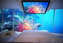 Luxury Bedrooms  / by Darragh Handshoe