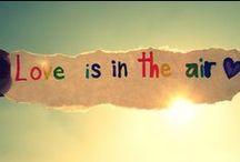 Joyeux Rainbow