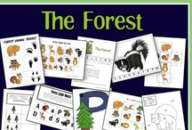 Forest Animals Theme / by Megan Clark