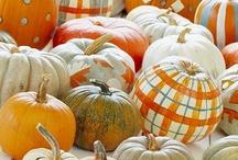 Halloween & Fall Decor / by Sarah Cool