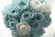 Wedding Bouquets & Floral Arrangements   / by Mandy Nenstiel