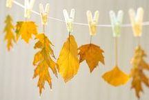 Autumn / by Katherine Nabors