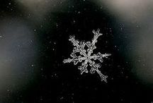 Creesmass!  / I... LOVE Christmas...  / by Alison Hadley