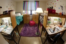 Room Decor / by Binghamton University