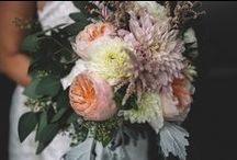 Haley + Justin / COLOR + STYLE: Blush and ivory; classic and sophisticated.