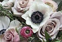 Sara + Amber / COLOR + STYLE:  Deep purple, dusty purple, white, gold; dark, glamorous and romantic.