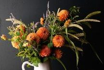 Shannon + Joshua / COLOR + STYLE: Orange, lavender, sage and gray; rustic and eclectic.