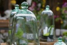 GARDEN: TERRARIUM / Terrariums and Cloches, Gardens under Glass. Gardening indoors is just all right with me.