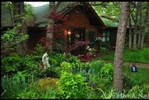 HOME: LOG CABIN / We live in a log cabin in the piney woods of Oklahoma.