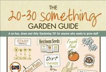 GARDEN: BEST VEG TO GROW / Want the best vegetables? Grow your own.  / by Dee Nash