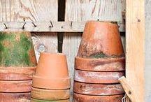 GARDEN: TERRA COTTA / Pots and bricks, the quintessential garden color.
