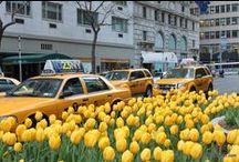 Nova York / Dicas de NOVA YORK, NEW YORK selecionadas pela edidora do site de viagens Longe e Perto www.longeeperto.com