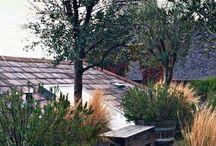 Outdoors/Dehors / In the garden, on the terrace, flowers and benches, plants and patios. Dans le jardin, sur la terrace, le patio, fleurs et bancs.
