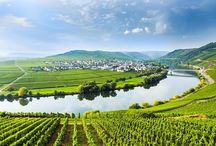 Mosel Wine Country, Germany / What to do and see in Germany for 'so beautiful wine country