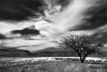 Rudolph Hiemstra / Rudolph enjoys photography in his leisure time. He holds a licentiate (LPSSA) as a member of the Photographic Society of South Africa. He has an exceptional gift for looking at reality from a different angle; of seeing creatively.