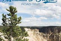 MONTANA Roadtrip / Montana Awesomeness, Reisetipps, Glacier Nationalpark, Yellowstone, Mietwagen, Road Trip