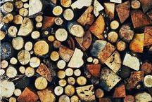 Wood / by Allie Rowe