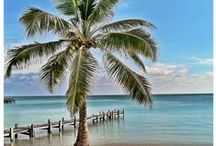 Tales of an Expat: Ambergris Caye, Belize / All the best about my favorite spot and part time home in Belize - Ambergris Caye!