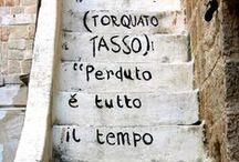 Italia / :: la vita e troppo breve per bere vino cattivo :: / by Allie Rowe