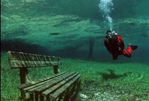 Diving and Under the Sea / Everything related to scuba diving, snorkeling, and other water related sports.