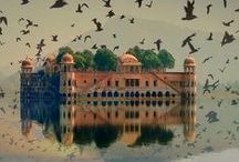 Travel -> will I ever go to India? / by Daniela Guiomar